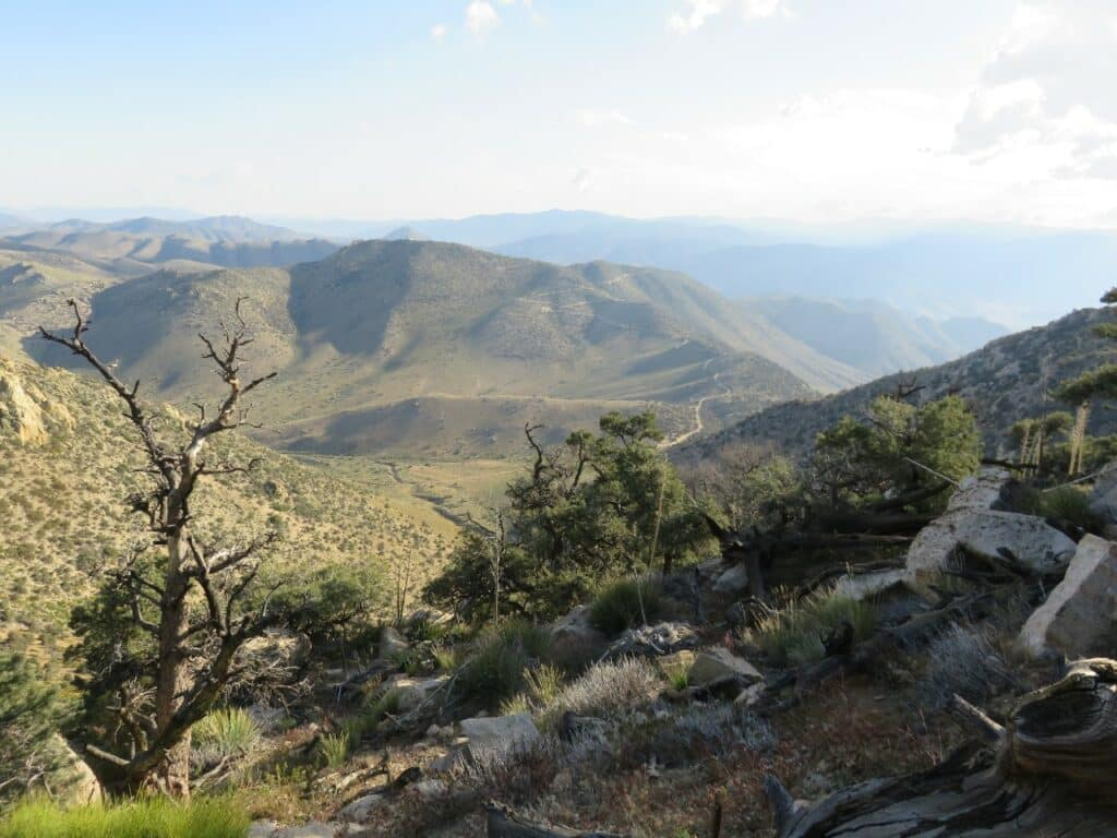 PCT - View from a stone