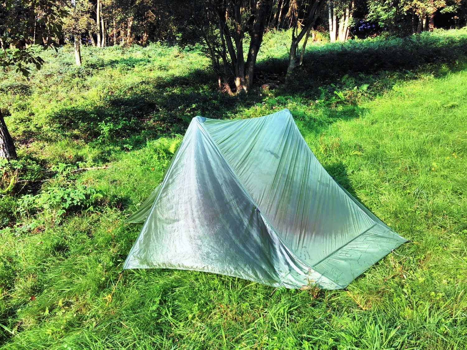 Rheinsteig Stage 2 - My tent in the morning