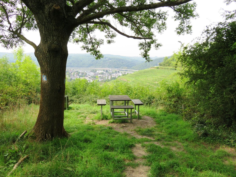 Rheinsteig Stage 3 - Resting place behind the Haanhof in the forest
