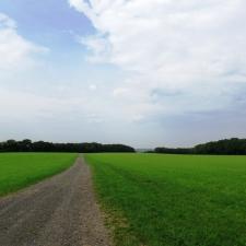 Rheinsteig Stage 3 - On the way to Unkel via fields