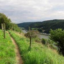 Rheinsteig Stage 4 -Rheinsteig Path in the Rheinbrohl Bird Sanctuary