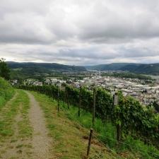 Rheinsteig Stage 4 -Vineyards at Arenfels Castle