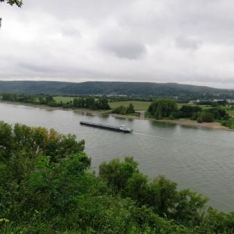 Rheinsteig Stage 4 - View on the Rhine