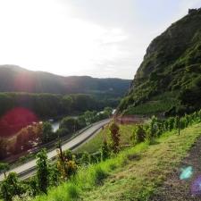 Rheinsteig Stage 4 - shortly before Leutesdorf