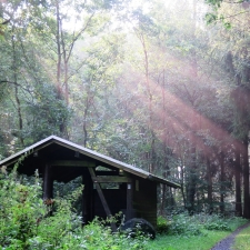 Rheinsteig Stage 6 - Refuge in the forest surrounded by sunshine