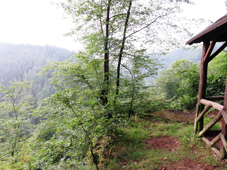 Rheinsteig Stage 6 - shelter Nonnenlay viewpoint