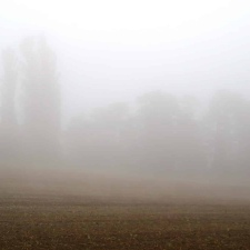 Rheinsteig Stage 7 - Hardly any view through the fog