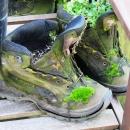 Rheinsteig Stage 7 -  Hiking boots