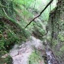 Rheinsteig-Day-8_climp-ruppertsklamm