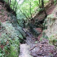 Rheinsteig-Day-8_descent-in-the-ruppertsklamm